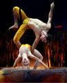 Cirque du Soleil: TOTEM trapeze duo