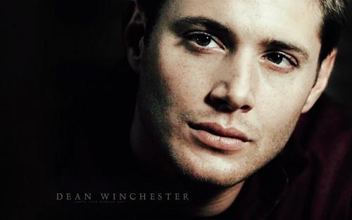 dean winchester fondo de pantalla containing a portrait entitled Dean:**