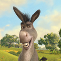 Donkey - shrek photo