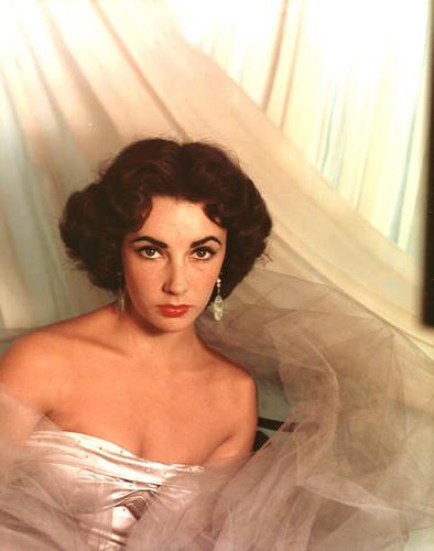 Elizabeth Taylor karatasi la kupamba ukuta titled Elizabeth Taylor