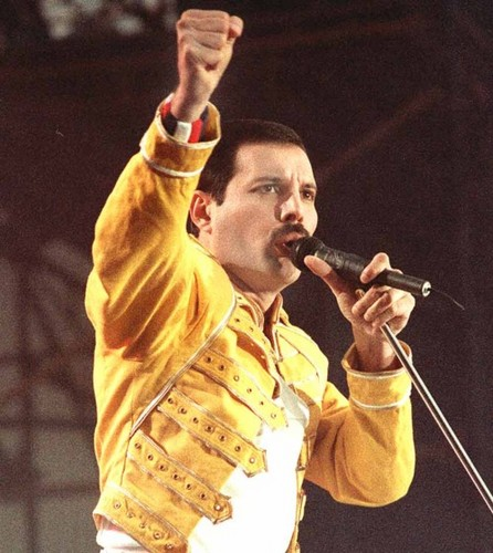 Freddie Mercury - freddie-mercury Photo