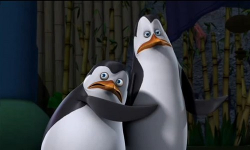 Kowalski & Private