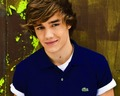 Liam♥ - liam-payne wallpaper