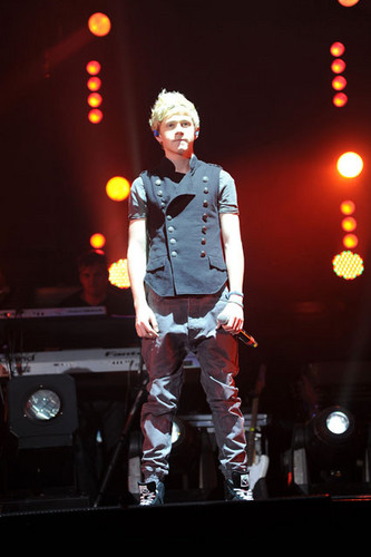 Celebrity Contests wallpaper possibly with a concert titled Niall James Horan