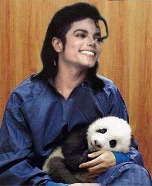 Panda loves MJ :)