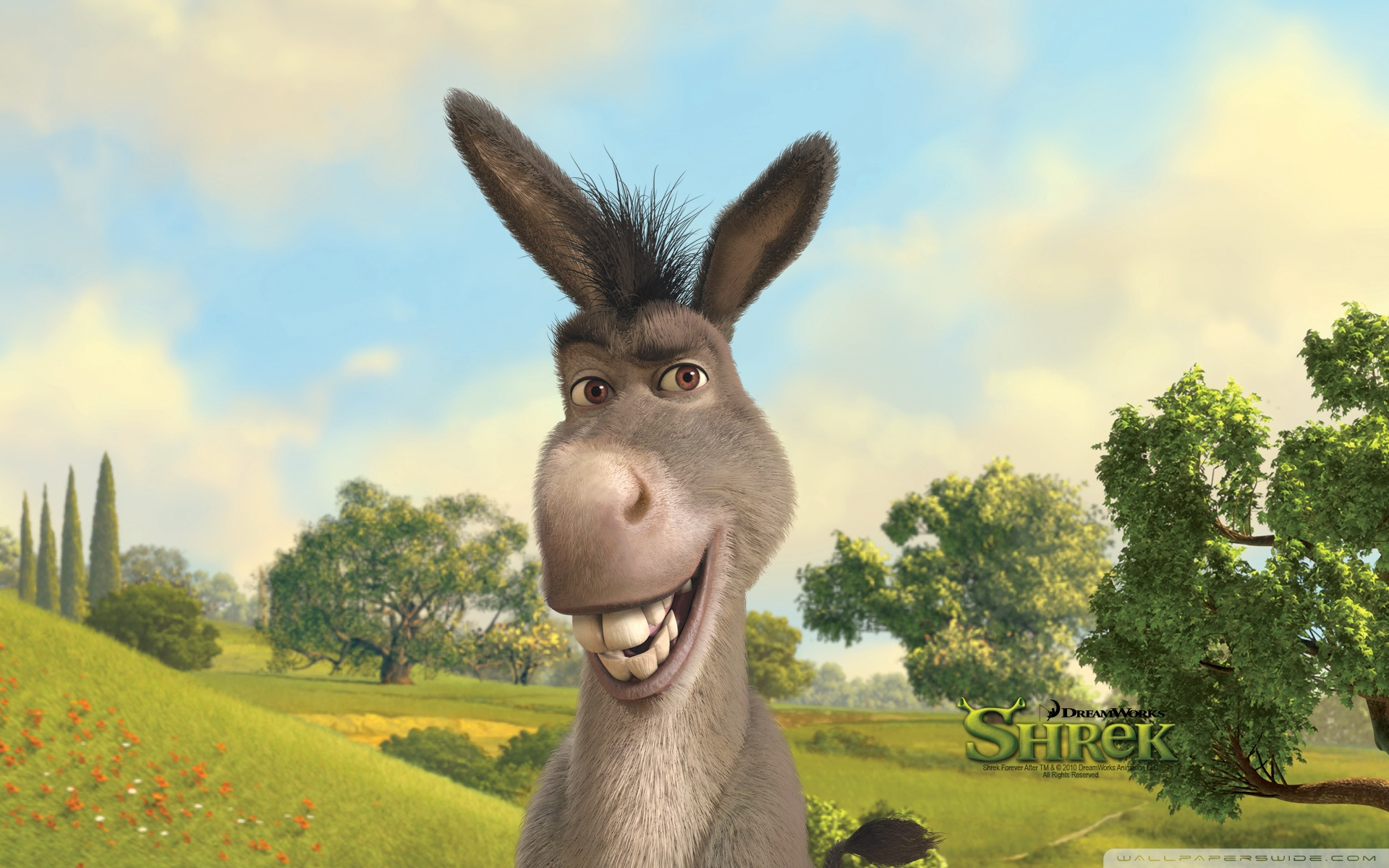 donkey from shrek quotes quotesgram