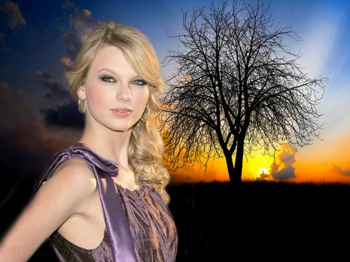 Swift - taylor-swift Wallpaper