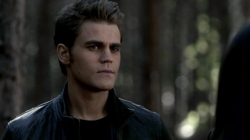 Damon and Stefan Salvatore 壁紙 possibly with a portrait titled The Vampire Diaries 3x18 The Murder of One HD Screencaps