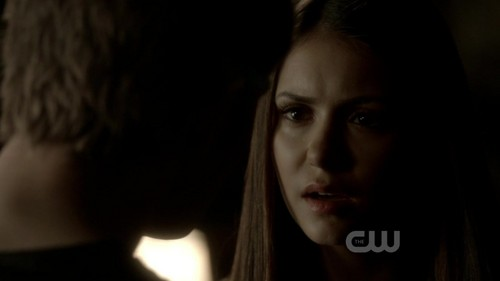 The Vampire Diaries 3x18 The Murder of One HD Screencaps - nina-dobrev Screencap