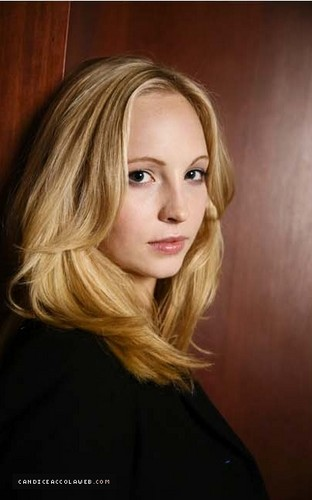 Candice Accola پیپر وال with a portrait entitled Untagged portraits of Candice at the 2008 Toronto International Film Festival.