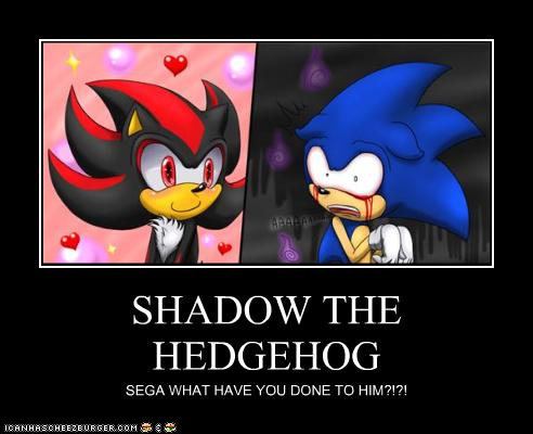 Sonic, Shadow, and Silver wallpaper possibly containing anime entitled WTH IS WRONG WITH YOU, SHADOW???