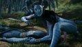 Avatar - avatar photo