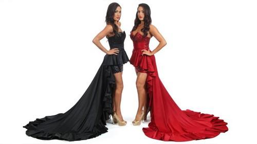 Bella Twins-Hall of Fame 2012