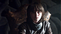 Bran Stark - bran-stark photo