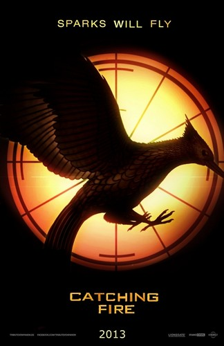 Catching Fire posters - catching-fire Photo