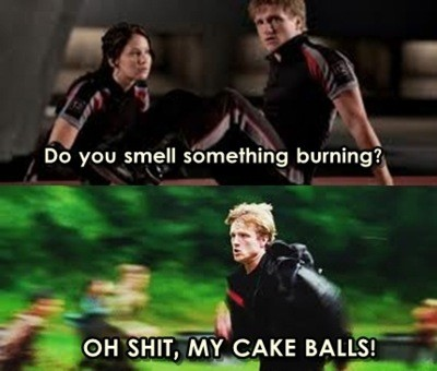 The Hunger Games wallpaper titled Funny THG