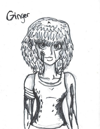 Ginger drawing