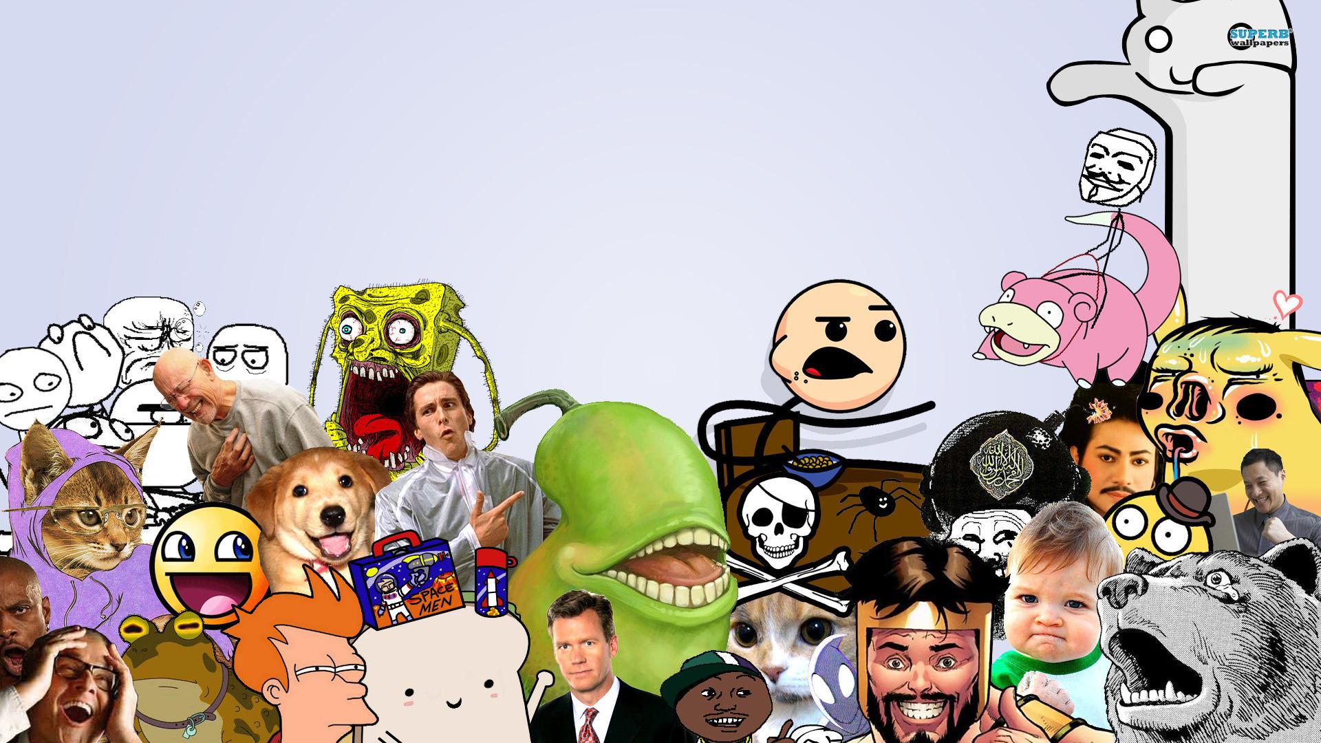 Meme Wallpaper  Memes 30218798 Fanpop