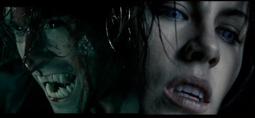 Hybrid & Vampire