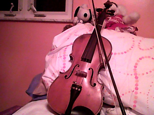 Trueartist Images My Violin Wallpaper And Background Photos 30298594