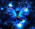 Mythical Butterfly - fantasy photo