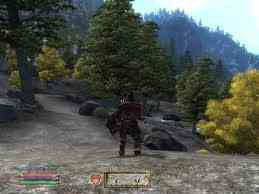 Oblivion (Elder Scrolls IV) fond d'écran possibly with a mountain hemlock, a riparian forest, and a ponderosa entitled Oblivion