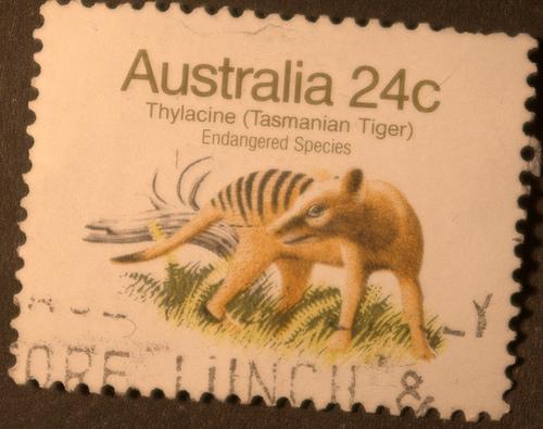 Thylacine on Australian Stamp