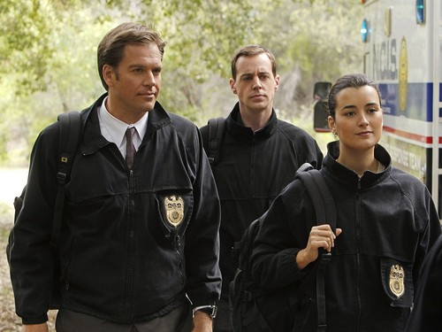 Tiva wallpaper called Tony and Ziva wallpaper