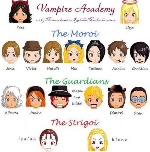 Vampire Academy<3