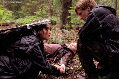 Peeta Mellark and Katniss Everdeen kertas dinding possibly containing a red cabbage and a mulsa, sungkupan titled World Of Hunger Games