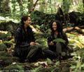 World Of Hunger Games
