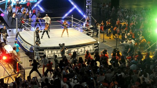 Wrestlemania Axxess Flash Mob
