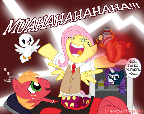 My Little Pony Friendship is Magic wallpaper containing anime entitled Yup, Fluttershy is insane.