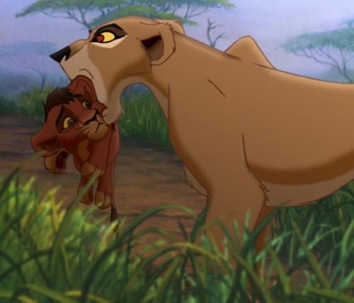 Zira and cub Kovu
