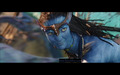 avatar - avatar photo