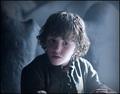 Rickon Stark - game-of-thrones photo