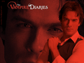 ~ Damon's gaze ~ - the-vampire-diaries-tv-show wallpaper