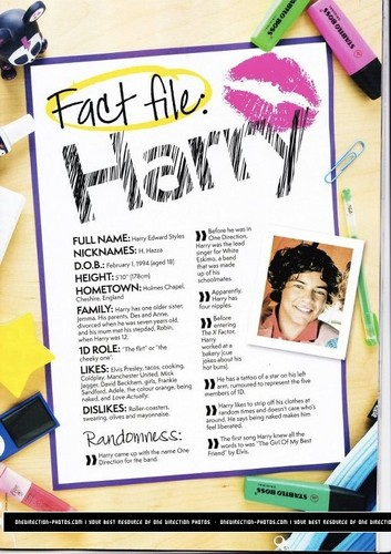 One Direction fond d'écran entitled 1D fact files!