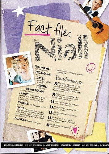 One Direction wallpaper possibly with a newspaper called 1D fact files!