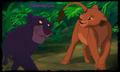 Bagheera and Nala