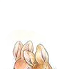 Beatrix Pottter - Peter Rabbit