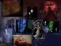Brad Dourif Halloween - brad-dourif wallpaper
