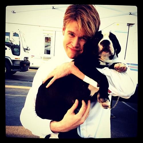 Chord with Heather's कुत्ते का बच्चा, पिल्ला