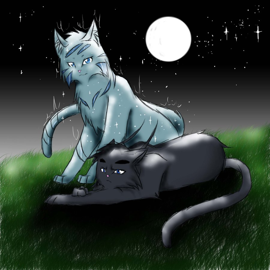 Warrior Cats Snowfur And Thistleclaw As Ghost