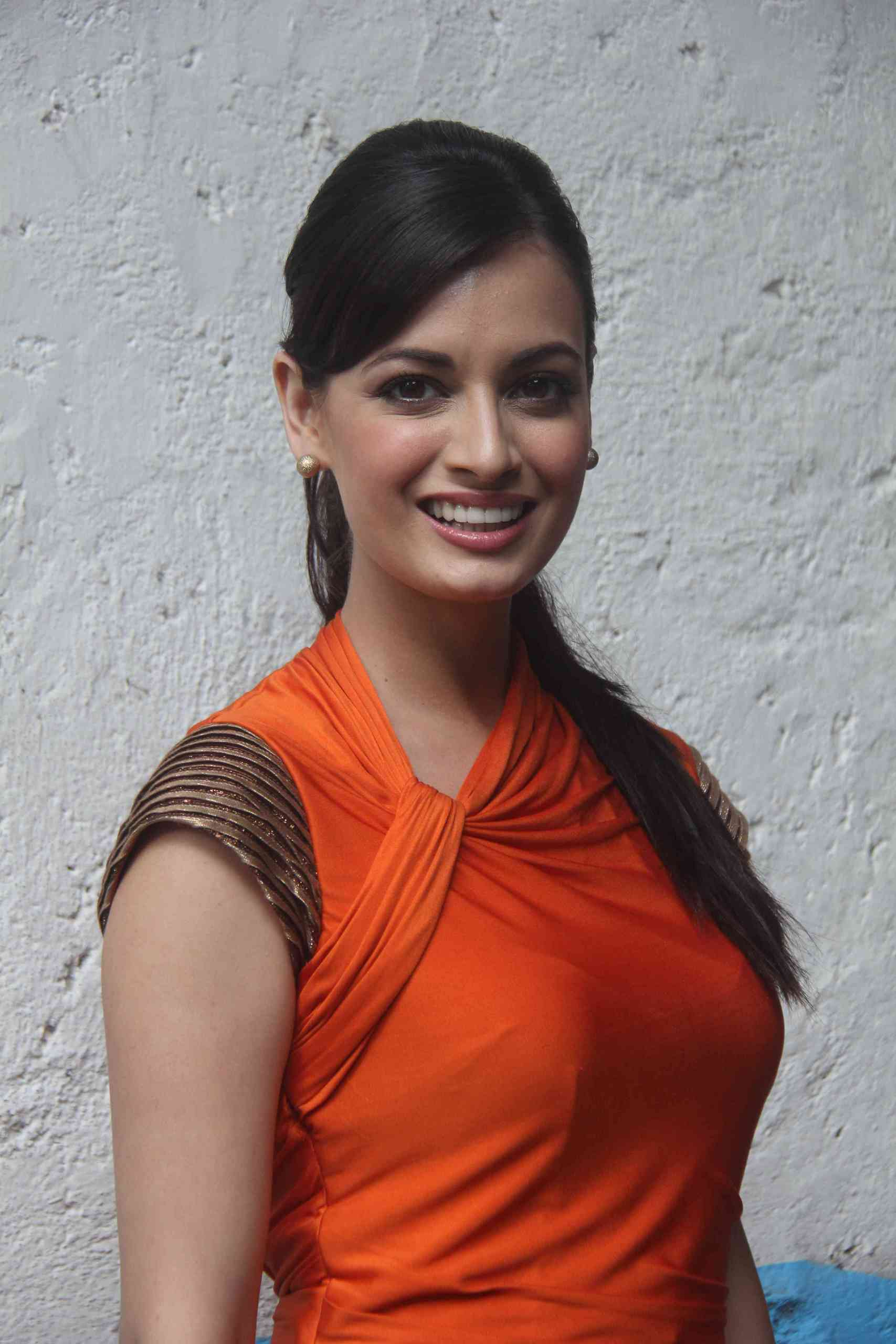 dia mirza pictures