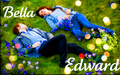 edward-and-bella - Edward and Bella- New Moon wallpaper
