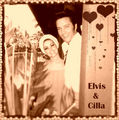 Elvis & Cilla - elvis-and-priscilla-presley fan art