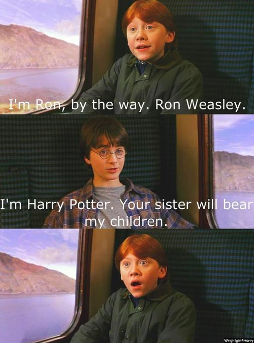 Funny Harry Potter And Hermione Memes : Funniest harry potter quotes quotesgram