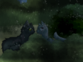 Graystripe and Silverstream - warriors-novel-series fan art