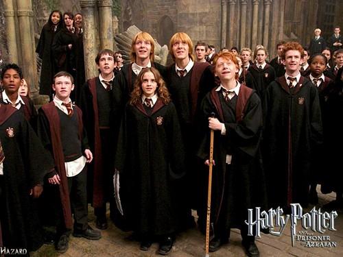 Hermione Granger wallpaper called Gryffindor
